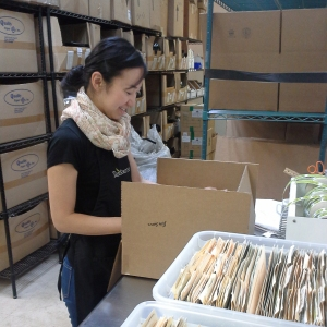 Eri packing a wholesale order for shipping
