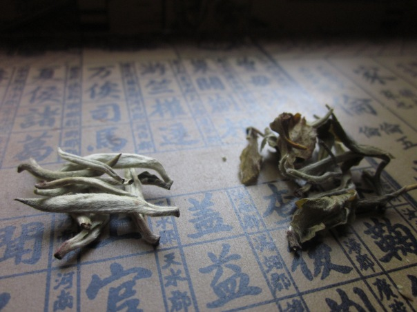 TeaSource Bai Hao Silver Needles, from Fuding, Fujian, China on left, and  Silver Peony White tea, from Yunan Province on right