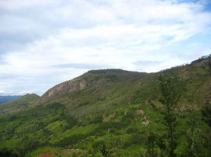 1024px-Nilgiri_mountain_view